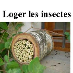Loger les insectes…